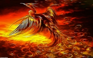 phoenix_mythical_bird__1440x900