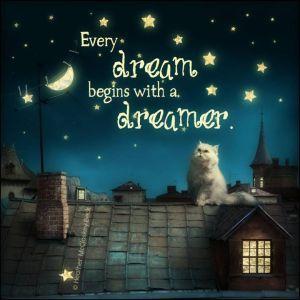 everydream