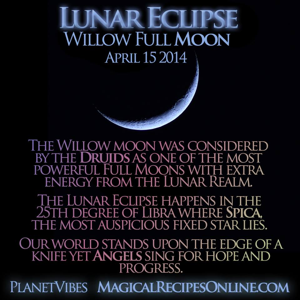 Willow Full Blood Moon Total Lunar Eclipse And The Moon Sees All