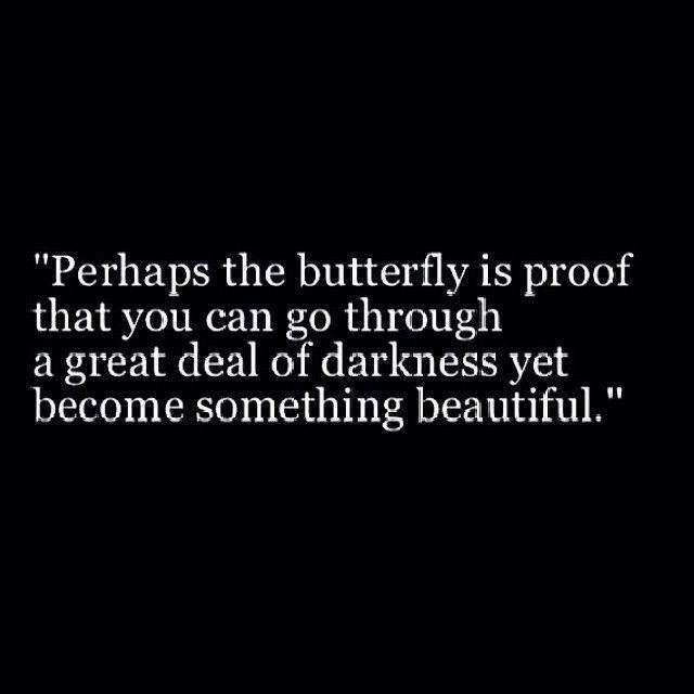Perhaps The Butterfly Is Proof