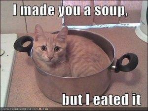 CatSoupMeme