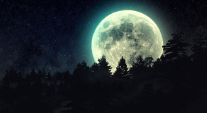full-moon-beyond-the-pines-728-x-400